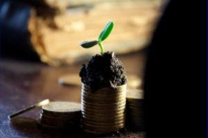 groeiend geld